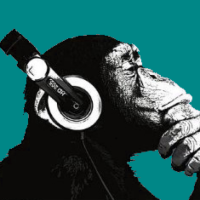 audioprimate.blog